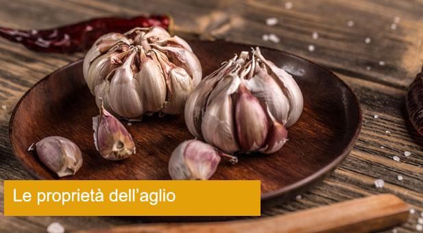 garlic-PYYRGNR