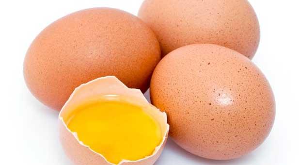uova-salmonella