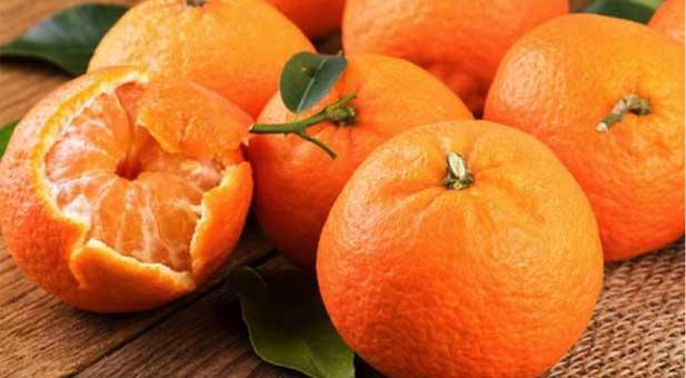 mandarini